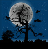 Birds and dead tree at full moon Stock Photo