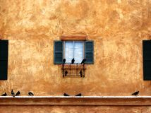 Birds and Decorative Window Outside Historic Home. Birds rest on a windowsill outside a historic California coastal home Stock Photography