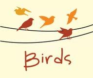 Birds design Stock Photo