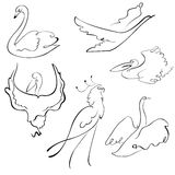 Birds Design Set Stock Images
