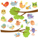 Birds on Different Branches. Vector Illustration Royalty Free Stock Image