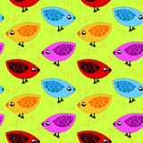 Birds Eating Corn Seamless Background Royalty Free Stock Photos