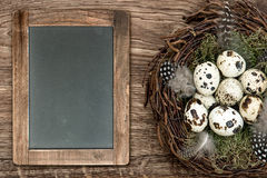 Birds eggs in nest, wooden background, blackboard. Birds eggs in nest on rustic wooden background. vintage easter decoration with blackboard for your text royalty free stock photos