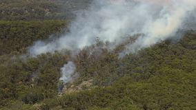 Helicopter and trees. A birds eye view shot of a helictopter and trees with smoke. Camera zooms in and moves forward stock video