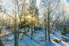 Birds Eye-view of Tree Coated by Snow Near Brown House Royalty Free Stock Photography