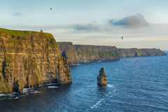 Birds eye views from the cliffs of moher in county clare ireland Stock Image