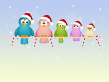 Birds family at Christmas Royalty Free Stock Image