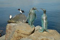 Birds of a feather Stock Photos