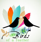 Birds of a Feather. Flock together - togetherness concept Royalty Free Stock Photography