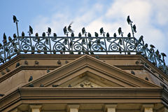 Birds of a feather stick together. Many birds decorate outside of Victorian style building stock images
