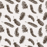 Birds feathers pattern. Vector patttern of the sketches the birds feathers Stock Photography