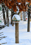 Birds feeder. Stock Photo