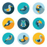 Birds flat icons Stock Photography