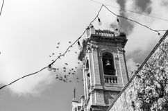 Birds in flight above a bell tower in a Mediterrenean town Royalty Free Stock Photography