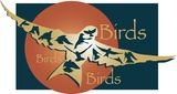 Birds in flight Design Royalty Free Stock Photos