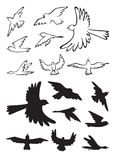 Birds in flight silhouette Royalty Free Stock Photo