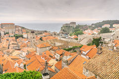 Birds Flocking Over Dubrovnik Olt Town at Sunset. Many birds flock over the historic old town of Dubrovnik, Croatia as dusk settles over the city walls Royalty Free Stock Photo
