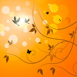 Birds Floral Indicates Petals Sunny And Florals Royalty Free Stock Image