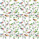Birds Floral seamless pattern Stock Photos
