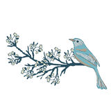Birds and flowers. A collection of  elements for design Stock Image