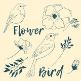 Birds and flowers. A collection of  elements for design Royalty Free Stock Photography