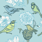 Birds and Flowers - seamless pattern Royalty Free Stock Image