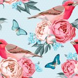 Birds and flowers seamless Stock Image
