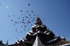 Birds fly atop Thai temple. In Mae Hong royalty free stock photos
