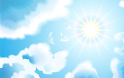 Birds fly in the blue sky through the clouds to the sun. Stock Image