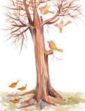 Birds fly among the branches. Dancing and playing Royalty Free Stock Photography