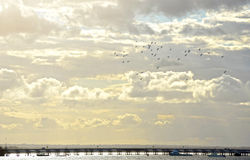 Birds flying above pier through heavenly clouds Stock Photo