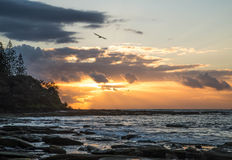 Birds flying over coastline at sunrise. Birds flying over the Caloundra coastline at sunrise showing surf,rocks and clouds Royalty Free Stock Photos