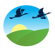 Birds flying over the green fields - vector Stock Image