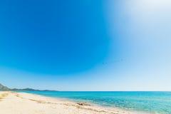 Birds flying over Piscina Rei beach Stock Photo