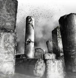 Birds flying over ruined columns Stock Photography