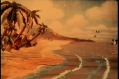 Birds flying over tropical beach paradise stock footage