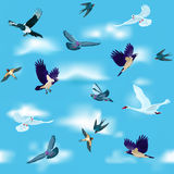 Birds are flying in the sky as seamless pattern Stock Photos