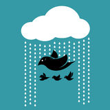 Birds flying in the sky when it rains. Royalty Free Stock Images