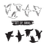 Birds flying in the sky.Vector black icons. Stock Photo