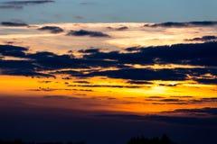 Birds flying in sunset Stock Image