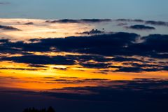 Birds flying in sunset. Against the evening sky Stock Photography