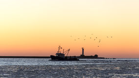 Birds flying in sunset over frozen sea and small ship Royalty Free Stock Photography