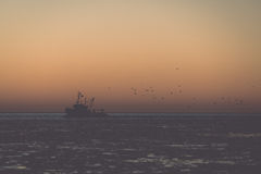 Birds flying in sunset over frozen sea and small ship - vintage Stock Photography