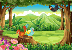 Birds at the forest. Illustration of the birds at the forest Stock Images