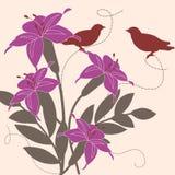 Birds in garden Stock Photos