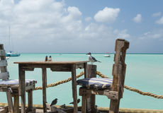 The birds are getting ready for lunch in Aruba. On Pelican Pier, an amazing lookout to the sea and view for a meal in Aruba in the Dutch Antilles.  The birds are Royalty Free Stock Image