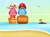 Birds go on vacation Stock Image