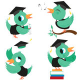 Birds with graduation hats and gowns Stock Images