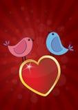 Birds heart Stock Image