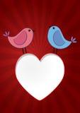 Birds heart Royalty Free Stock Photos